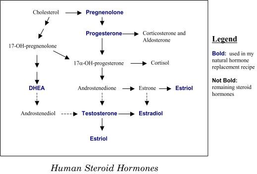 what do male hormone pills do